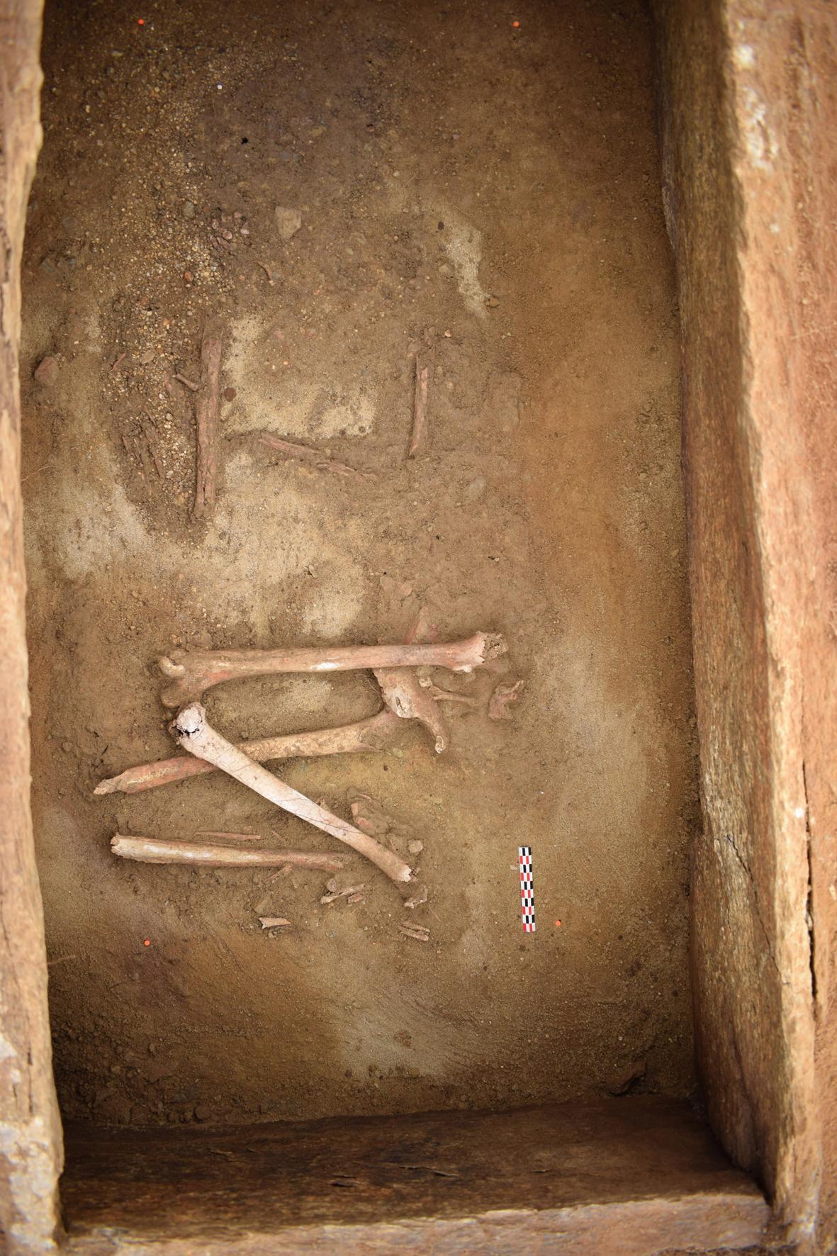 Во Франции археологи обнаружили древний некрополь, которому более 4 тысяч лет