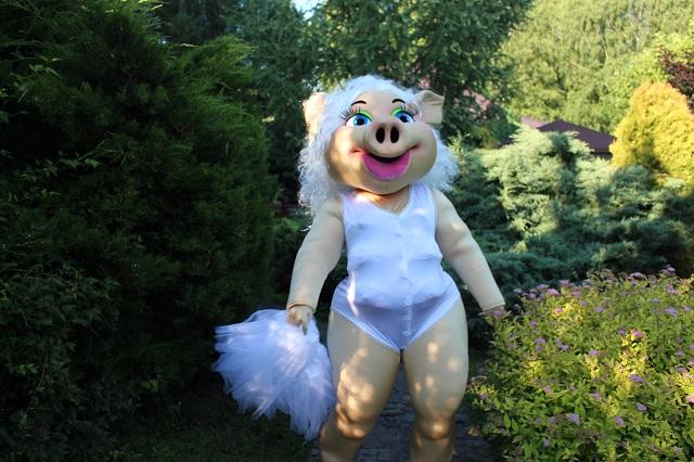 Детский центр во Львове заманивает клиентов стриптизом от свиньи Каролины: странные фото