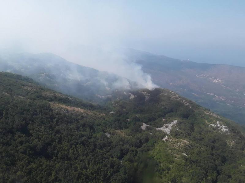 Український літак уже скинув 240 тон води при ліквідації пожежі вЧорногорії