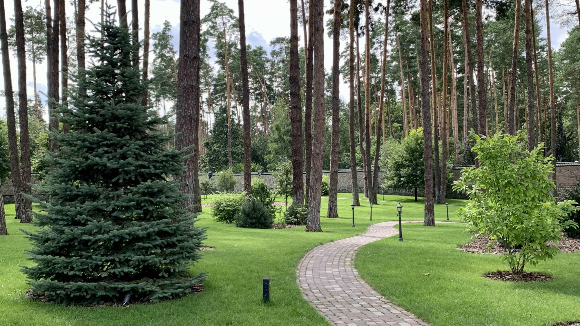Під Києвом серед соснового лісу стоїть будинок за 120 мільйонів. Ось як вінвиглядає