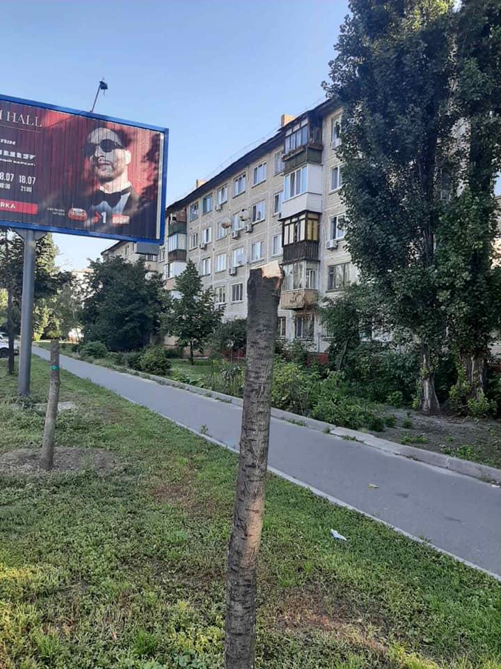 В Киеве спиливают молодые деревья: загораживают билборды с рекламой