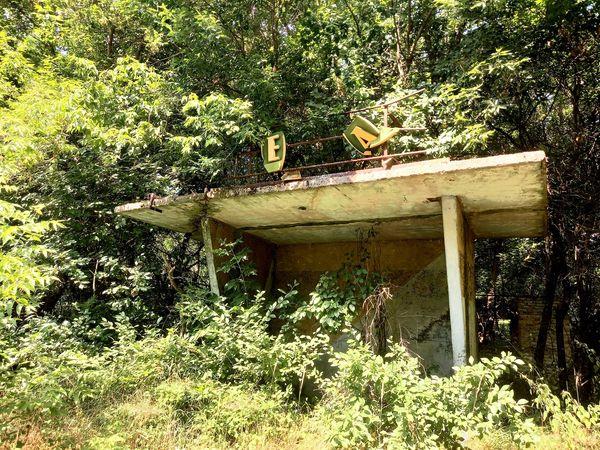 Дивіться, як виглядає покинуте село Чорнобильської зони: природа бере своє!