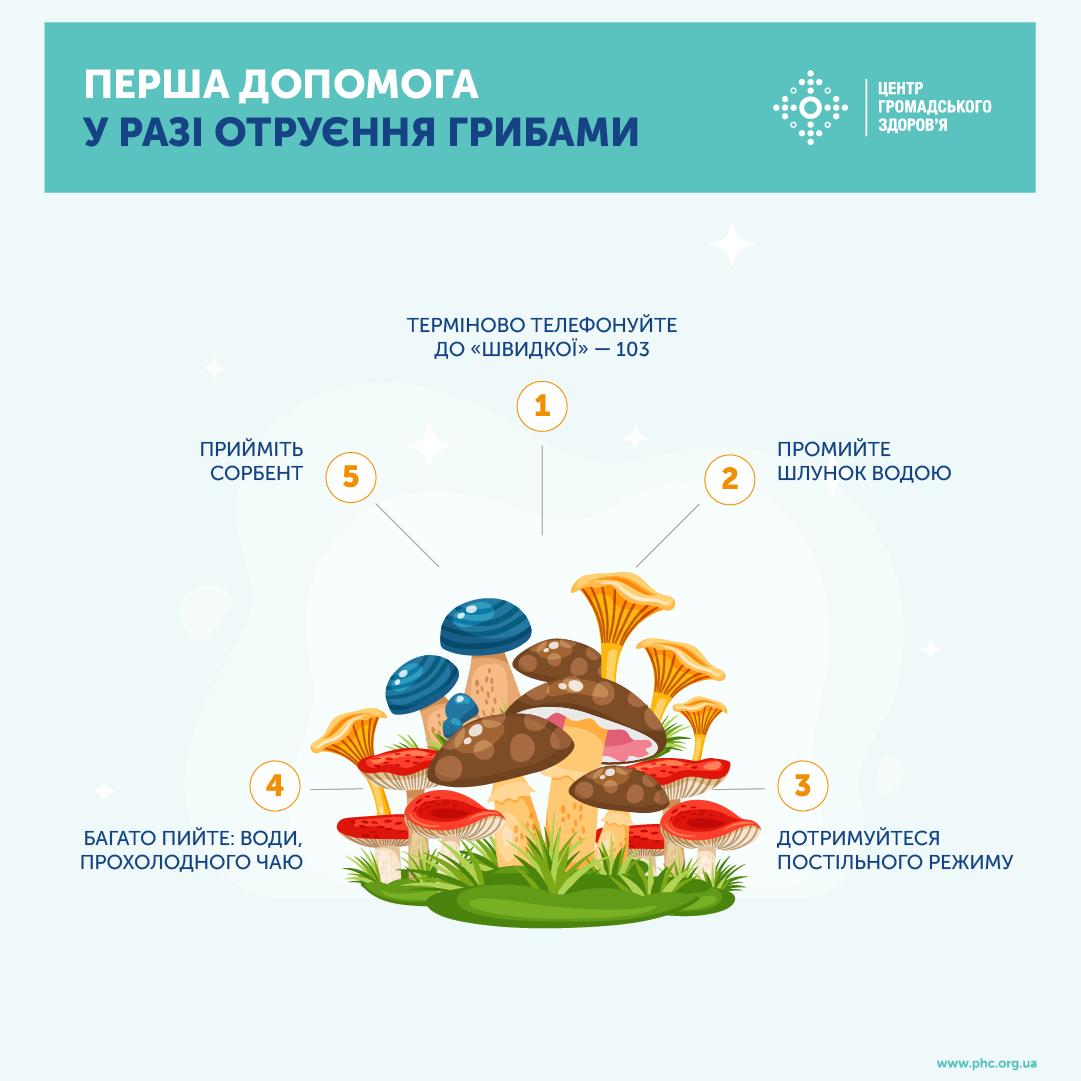 Эти знания могут спасти чью-то жизнь: первая помощь при отравлении грибами