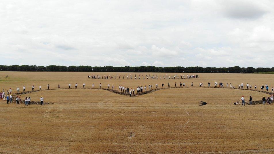 Под Винницей фермеры высеяли на поле самый большой герб Украины: видео рекорда