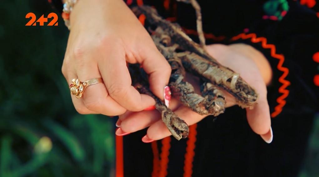 В Карпатах виявили невідому змію: укус вбиває миттєво (фото)