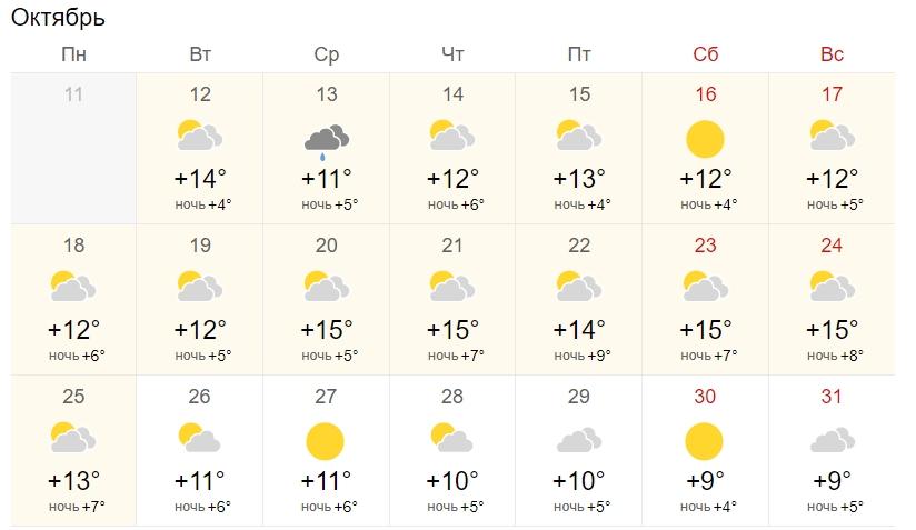 Дожди и холод быстро отступят: когда в Украину вернется солнце и тепло