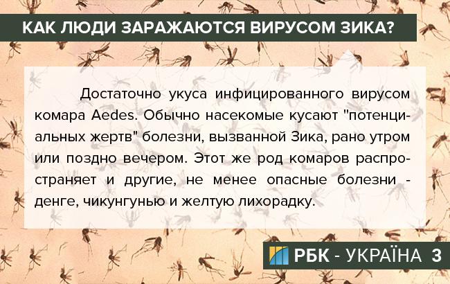 irus zika-03