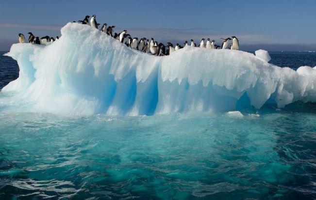 Antarktida.jpg