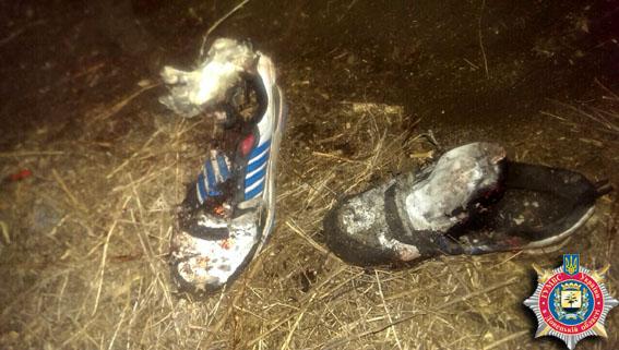 В Донецкой обл. двое детей подорвались на мине, один погиб, - МВД
