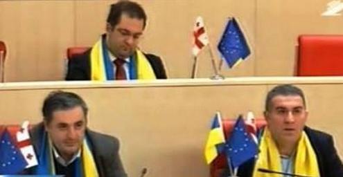 Граждане Грузии устроили флешмоб за безвизовый режим для Украины - Цензор.НЕТ 756