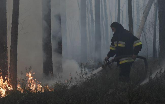 Лісові пожежі у Житомирській області: залишилося два осередки вогню