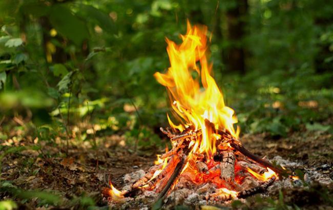 Фото: в Украине сохраняется высокий уровень пожарной опасности
