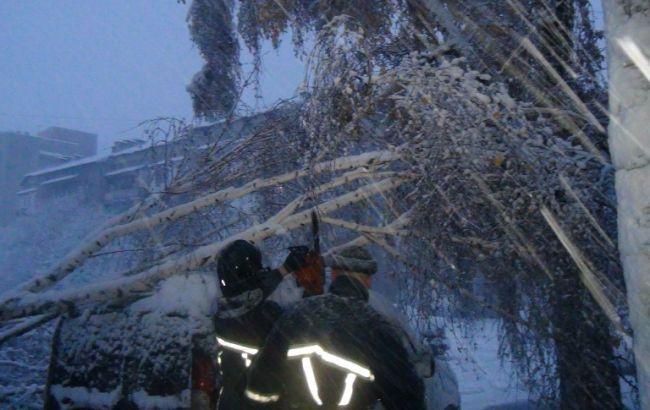 Фото: непогода в Прикарпатье