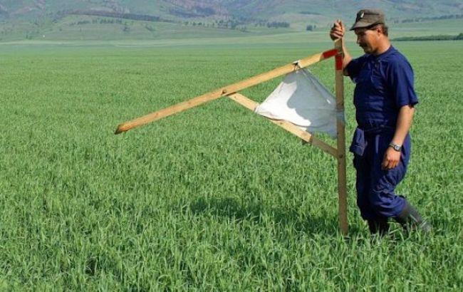 Майже 3 мільйони га землі вивели із держвласності за роки мораторію на продаж