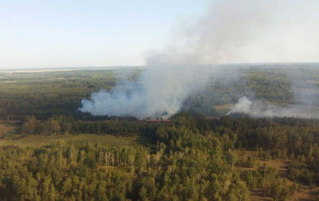 Фото: пожар в Новосанжарском лесничестве (пресс-центр ГСЧС)