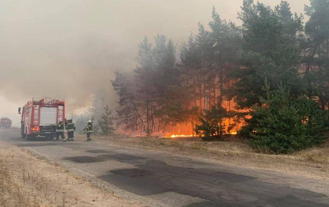 Из-за пожаров в Луганской области эвакуировали почти тысячу человек