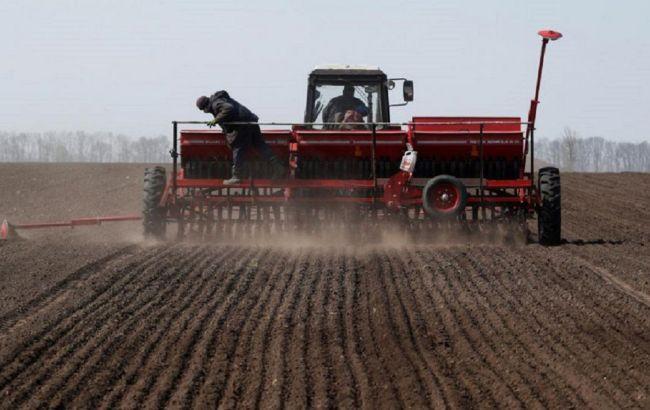 В Одесской области фермеры призывают власть компенсировать убытки в связи с засухой