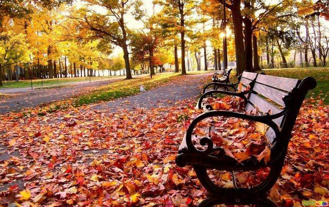 Фото: Осень (ZN.ua)
