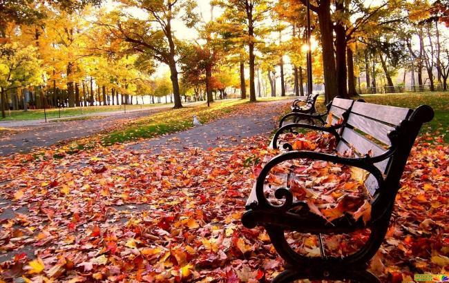 Фото: Осень в Украине (ZN.ua)