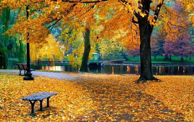 Фото: Погода 14 жовтня холодна і сонячна (fb.ru)