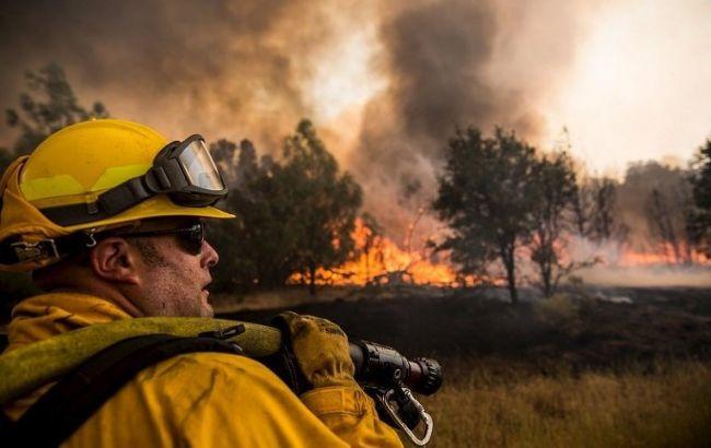 В Каліфорнії через лісові пожежі введено режим НС
