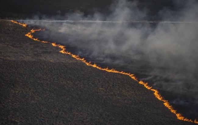 Фото: пожар в зоне ЧАЭС