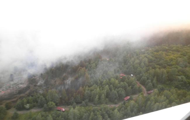 Фото: пожежа в зоні відчуження (прес-центр ДСНС)