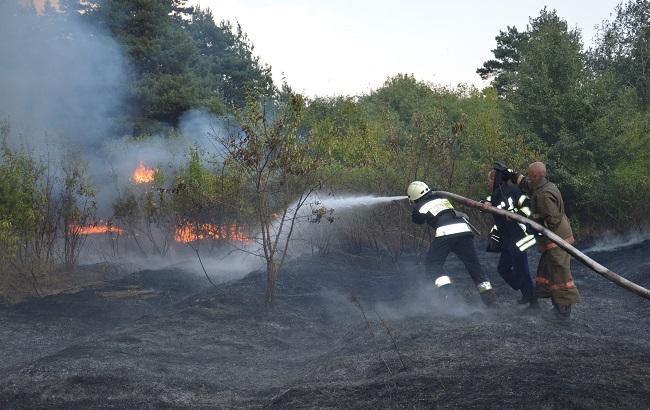 Спасатели продолжают тушение лесных пожаров в южных областях