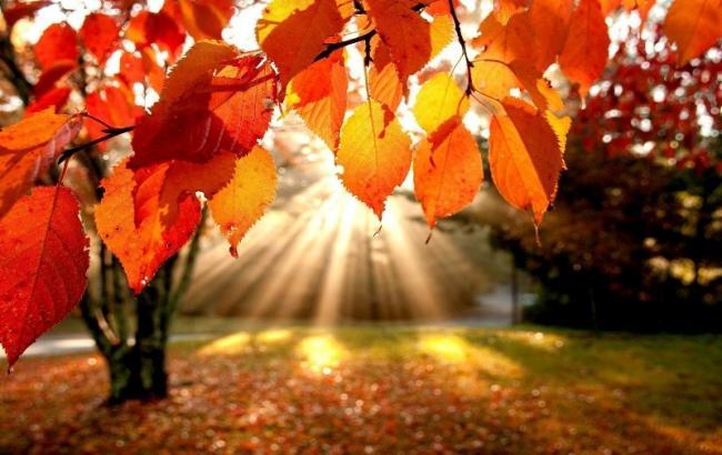 Фото: Осень (liveinternet.ru)