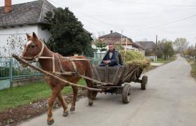 Фото: Село Соломонове в Закарпатській області вважається крайнім західним населеним пунктом України (РБК-Україна)