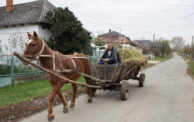 Фото: Село Соломоново в Закарпатской области считается самым крайним западным населенным пунктом Украины (РБК-Украина)