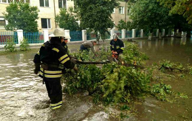 Фото: Дівчину придавило дерево (dsns.gov.ua)