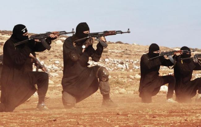 Фото: в Германии задержали 5 мужчин по подозрению в связях с ИГ
