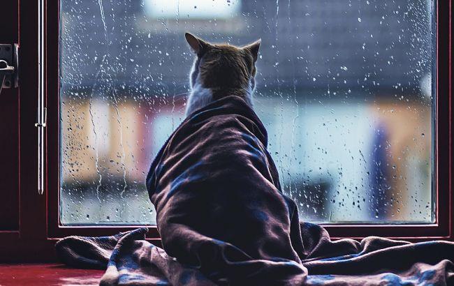 Погода в мос на 2 дня