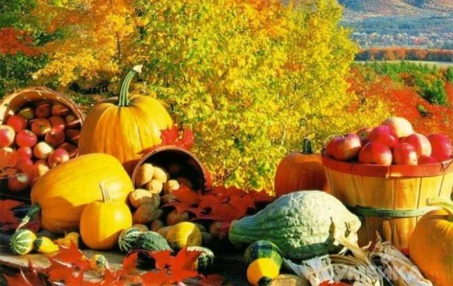 Фото: Осенние фрукты