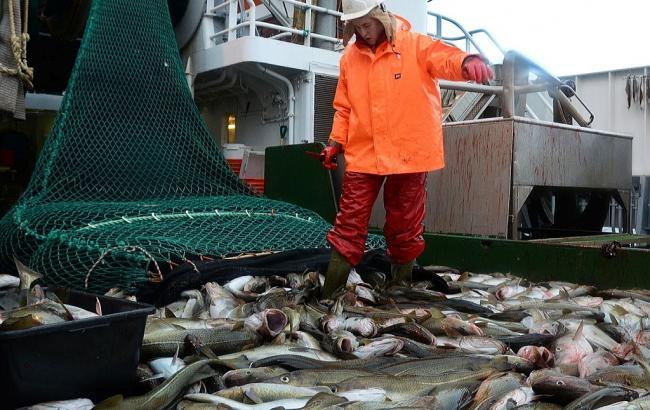 В Україні з 1 листопада обмежений вилов риби