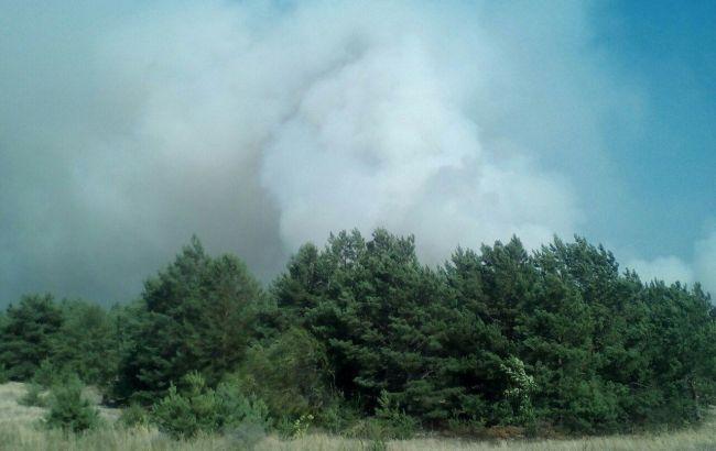 Фото: в Черниговской области горит военный лесхоз