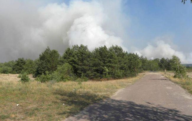 Фото: спасатели потушили пожар в Чернобыльской зоне