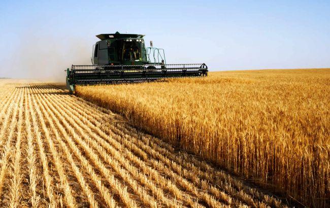 Фото: большинство инвестиций приходится на сельское хозяйство