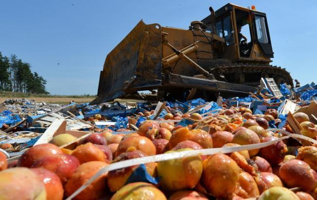 Фото: знищення санкційних продуктів