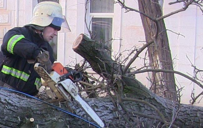 Негода вУкраїні: понад 100 населених пунктів залишились без світла
