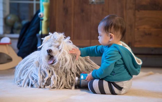 Фото: Донька Цукерберга Максима з собакою (facebook.com)