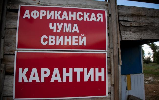 Вспышка АЧС зафиксирована вКиевской области