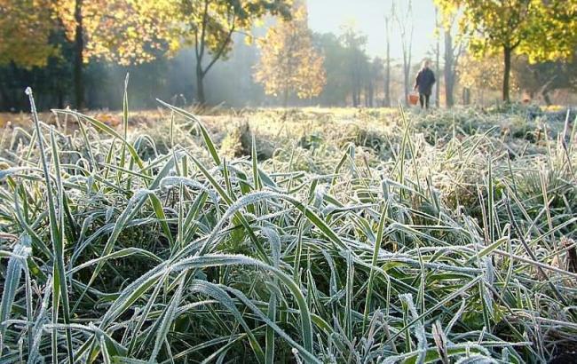 Синоптики попереджають про заморозки в Україні 17-19 травня