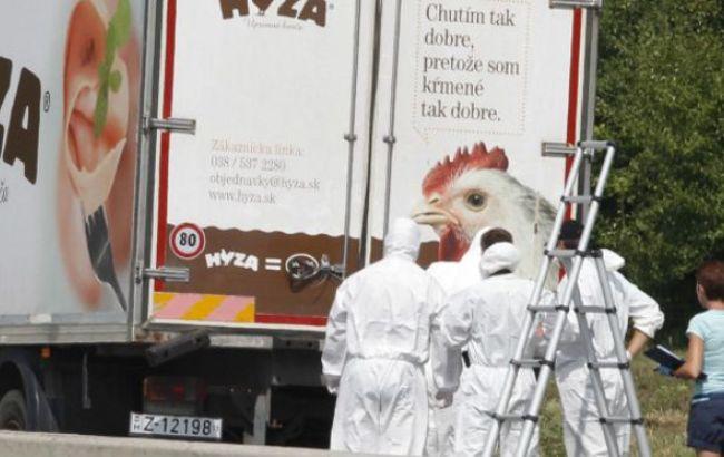 В грузовике на востоке Австрии оказалось более 70 погибших мигрантов