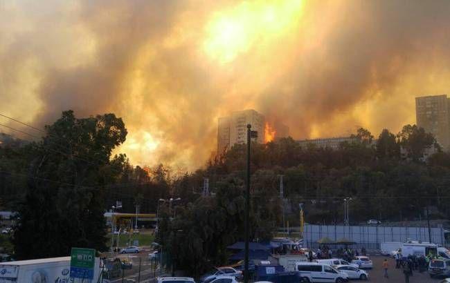 Фото: у Хайфі евакуювали 12 районів з-за пожеж