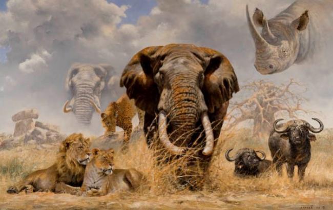 Фото: Дві третини диких тварин на Землі зникнуть до 2020 року (bigmir.net)