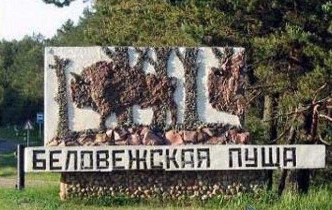 ЕС угрожает оштрафовать Польшу за вырубку в Беловежской пуще
