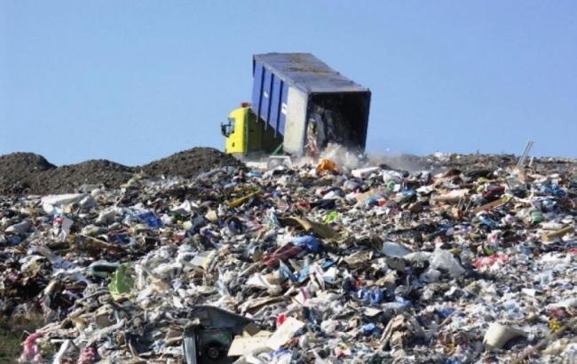 Фото: мусор