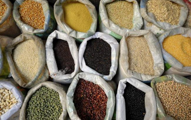 Фото: зерновые культуры